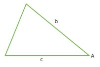SAS Triangle