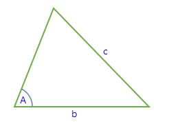 SSA triangle